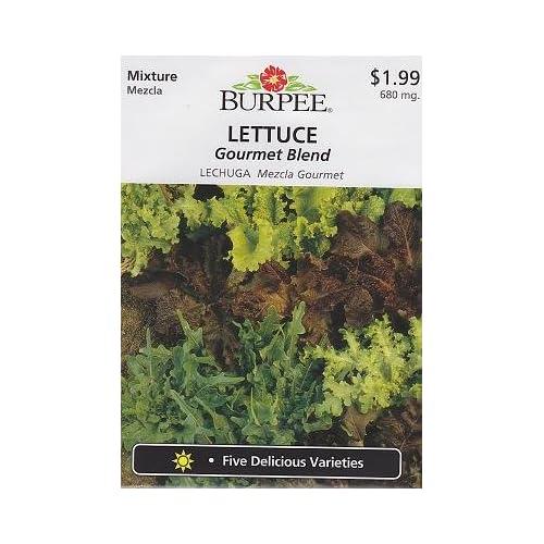 Types of lettuce... 51Q7S8L1nqL._SS500_