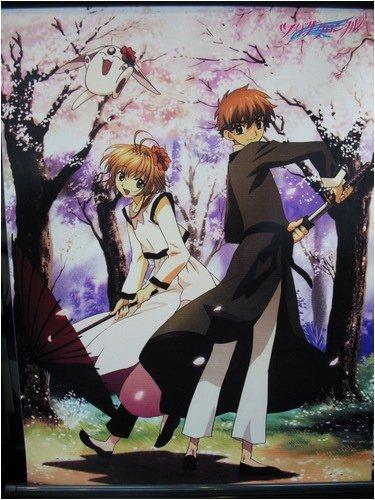 Tsubasa: Sakura and Syaoran 60x90cmWallscroll