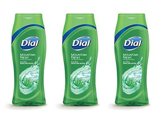 dial-clean-and-refresh-wash-away-bacteria-mountain-fresh-body-wash-16-ounce-pack-of-3