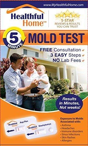 saludable-home-5-minuto-mold-prueba
