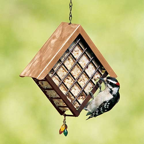 Image of Deluxe Metal Suet Cage (B005L4LCNE)