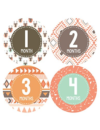 Months in Motion 383 Monthly Baby Stickers Baby Boy Girl Months 1-12