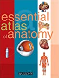 Essential Atlas of Anatomy (Essential Atlas Series)