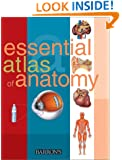 Essential Atlas of Anatomy (Essential Atlas Series)