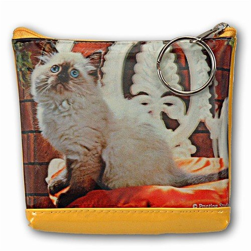 Lenticular Purse, 3D Lenticular Picture, Cat on Chair, TP-310-Pavia - Buy Lenticular Purse, 3D Lenticular Picture, Cat on Chair, TP-310-Pavia - Purchase Lenticular Purse, 3D Lenticular Picture, Cat on Chair, TP-310-Pavia (Lantor, Apparel, Departments, Accessories, Wallets, Money & Key Organizers, Billfolds & Wallets)