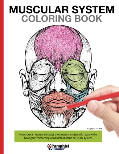 Anatomy Coloring Book By Kaplan : Science & anatomy adult coloring books unwindandcolor