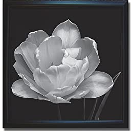 Summer\'s Comfort by Charles Britt Premium Satin-Black Framed Canvas (Ready-to-Hang)
