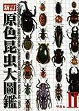 原色昆虫大圖鑑 第2巻(甲虫篇)