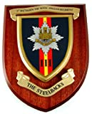 3rd Btn Royal Anglian Regiment Wall / Mess Plaque