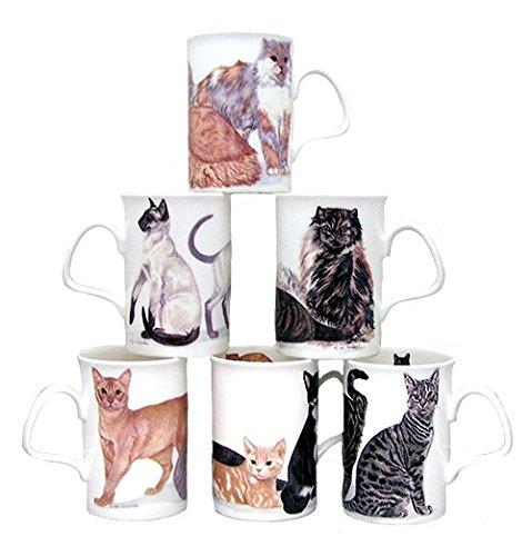 Cats Galore Roy Kirkham England Fine Bone China Lancaster Mug