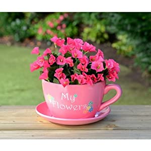 Giant Tea Cup And Saucer Planter My Flowers Garden Outdoors