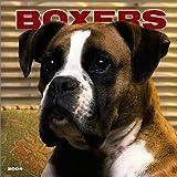 Boxers International 2004 Calendar