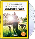 Cesar Millan: Leader of the Pack
