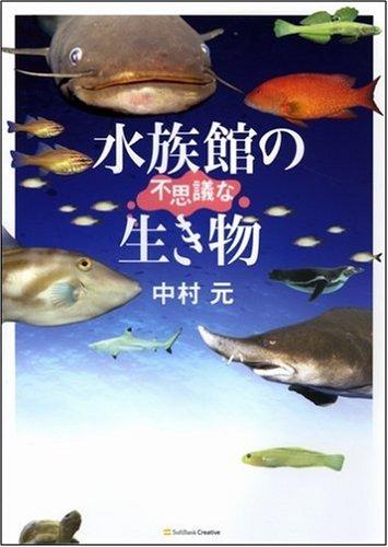 水族館の不思議な生き物