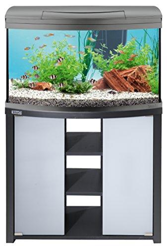 Tetra AquaArt Evolution Line LED Aquarium-Komplett-Set 100 Liter anthrazit (moderne LED Beleuchtung, integrierte Tag-Nachtlichtschaltung, gebogene Frontscheibe)