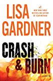 Crash and Burn (Thorndike Press Large Print Core)