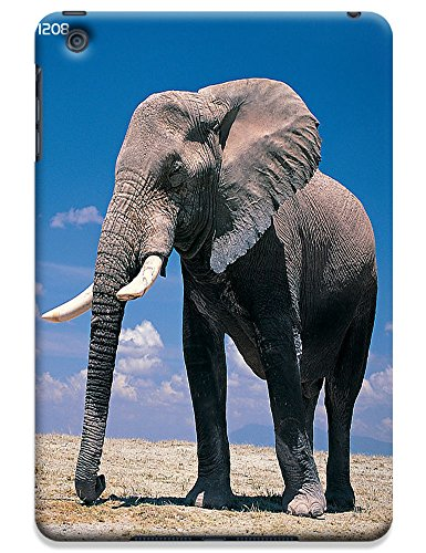 Fantastic Faye Cell Phone Cases For iPad mini The Cute Design With Elephant No.5
