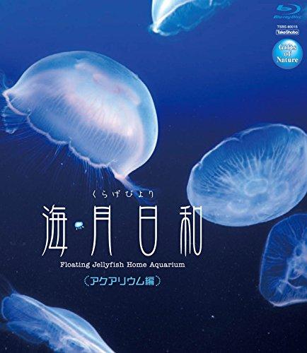 海月日和 <アクアリウム編></p> [Blu-ray]