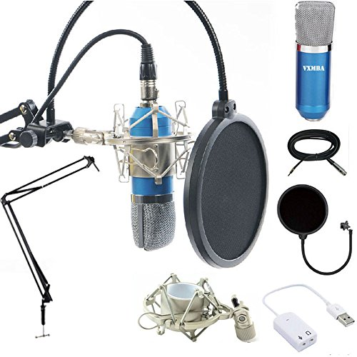 Professional-Condenser-Microphones-Power-Supply-Cables-stand-suit35mm-Male-to-XLR-Female-CableBall-type-Foam-Cap-Metal-Shock-Mount-Table-Mounting-ClampPop-Filter