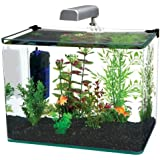 Penn Plax Curved Corner Glass Aquarium Kit, 10-Gallon