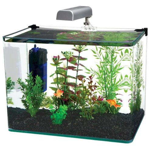 Penn-Plax Water World Radius Curved Corner Glass Aquarium Kit, 7.5-Gallon