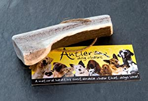 Easy Antler Dog Chew, medium by www.antlerdogchews.co.uk