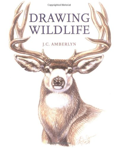 Drawing Wildlife