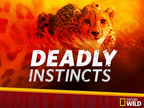 Deadly Instincts Season 1