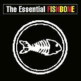 Essential Fishbone