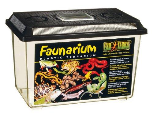 Exo-Terra-Faunarium-Large