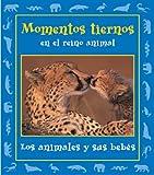 Momentos tiernos en el reino animal: Los animales y sus bebes (Momentos en el reino animal)