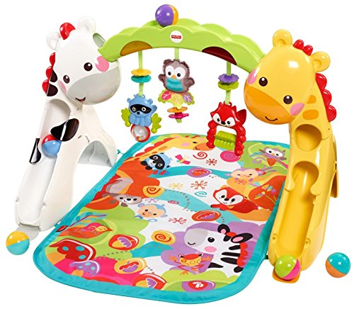 Fisher-Price Newborn-to-Toddler Play Gym (Gym Fisher Price Baby compare prices)