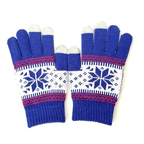 winterwolf-touchscreen-gloves-for-smartphones-tablets-blue