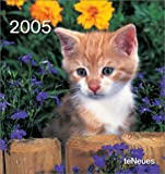 echange, troc Collectif - Calendrier 2005 : Cats