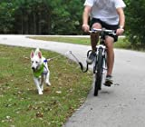 Springer Bike Leash-Let 'em RUN-Dogs love SPRINGER from the very first moment