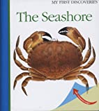 The Seashore (My First Discoveries)