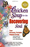 Chicken Soup for the Recovering Soul: Your Personal, Portable Support Group with Stories of Healing, Hope, Love and Resilience (Chicken Soup for the Soul) (0757302033) by Ackerman, Robert
