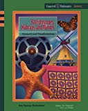 Kaleidoscopes, Hubcaps, & Mirrors: Symmetry & Transformations, Geometry (Connected Mathematics Series)