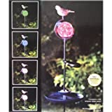 Bird bath and feeder Colour Changing Solar powered bird feeding station,