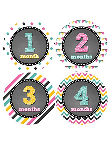 Months in Motion 428 Monthly Baby Stickers Baby Girl Month 1-12 Milestone Age Sticker Photo Prop - 1