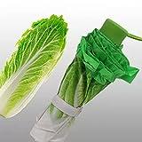 Rainbow Marine 白菜 イチゴ 模様 折りたたみ 傘 ベジタブレラ (白菜) UVカット 日傘 にも