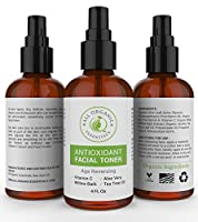 Vitamin C Facial Toner | Anti Aging Pore Minimizer for Face | Antioxidant With Aloe Vera & Tea Tree Oil | Nourishes & Hydrates the Skin - Astringent Great for All Skin Types | Gently Exfoliates - 4 Oz
