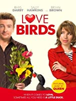 Love Birds [HD]