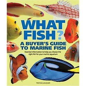 what fish