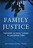img - for Family Justice: The Work of Family Judges in Uncertain Times book / textbook / text book