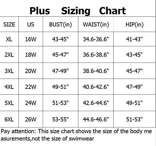 Dreaweet Women Retro Vintage Tassel High Waist Plus Size Two Piece Beachwear Bikini(FBA) 6