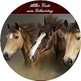 Tortenaufleger Pferde 008