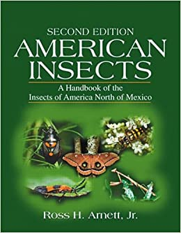 amazoncom american insects a handbook of the insects of