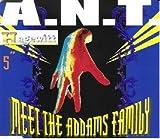 A.N.T. Meet the Addams family [Single-CD]