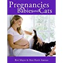 Pregnancies Babies And Cats The Practical Guides For Cat Lovers